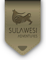 sulawesi Adventures. Indonesia travel guide